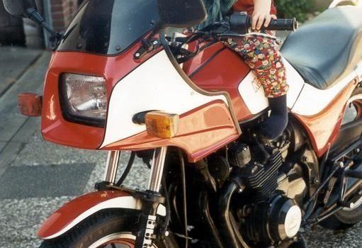 Kawasaki GPZ 750, VTR gekauft